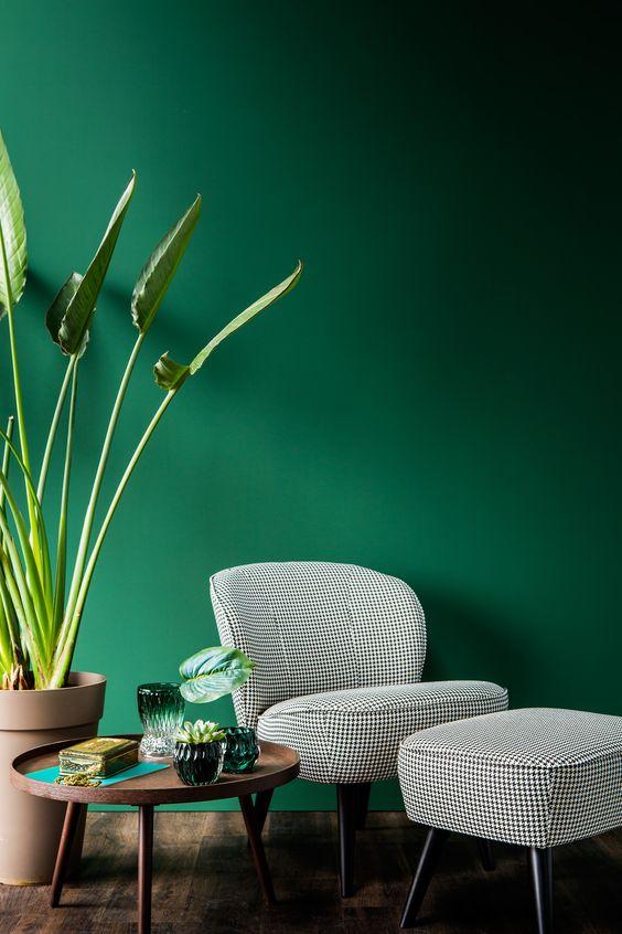 Jungle Jade