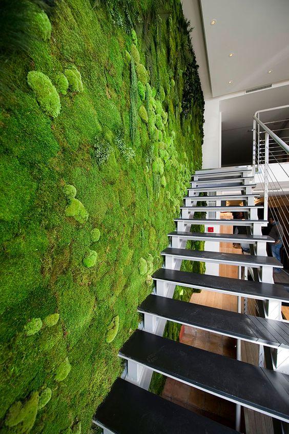 Living Stairway