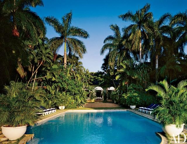 Jungle Pool