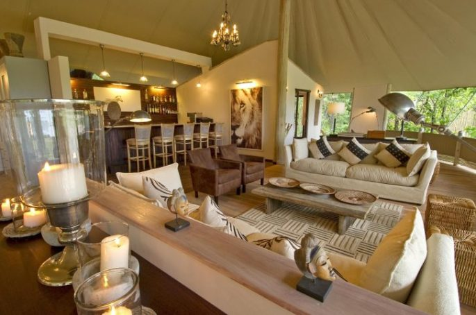 Safari Chic Interior