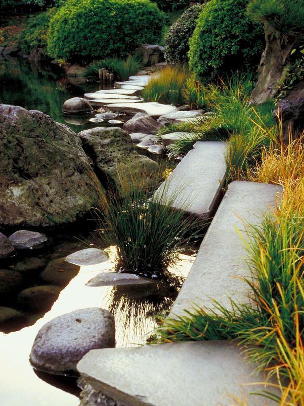 Garden Pond Dreamscape