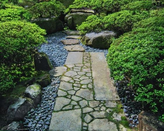 Patchwork Stones and Pruned Shrubs