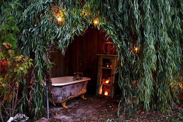 Willow Tree Hideaway