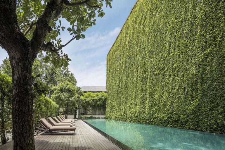 Modern Jungle Pool