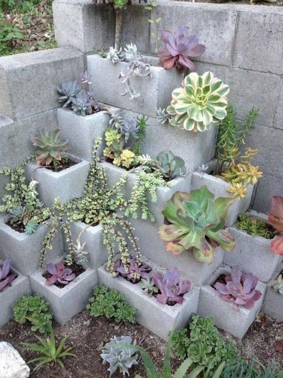 Succulent Temple