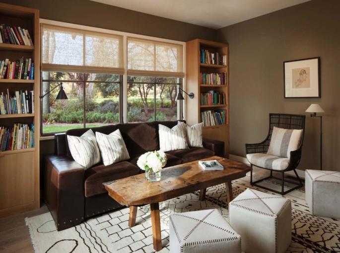 Deep Earthy Sofa + Modern Rug